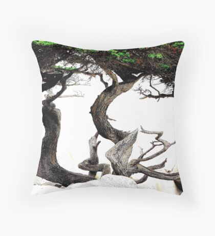 The Art Of Dying  Throw Pillow