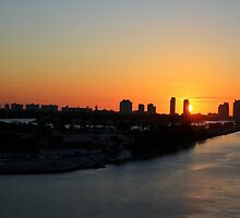 Good Morning Miami by Shelley Neff