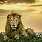 The King by Neville Jones