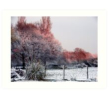 colours of the snow Art Print