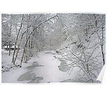 Beautiful Winter Poster