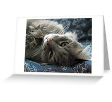 Jimmy lounging Greeting Card