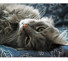 Jimmy lounging Photographic Print