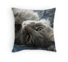 Jimmy lounging Throw Pillow