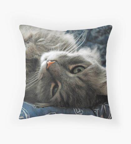 Jimmy lounging Throw Pillow