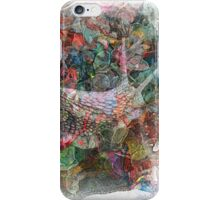The Atlas Of Dreams - Color Plate 47 iPhone Case/Skin