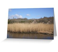 Hiding in the rushes Greeting Card