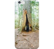 Copper Harbor, Michigan Estivant Pines Nature Sanctuary iPhone Case/Skin