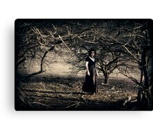 The Wooded Theatrette Canvas Print