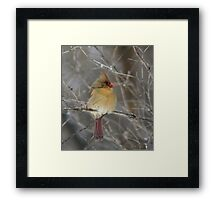 Look to the Left. Framed Print
