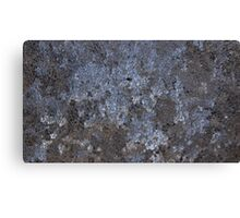 The Beauty in Frost. Canvas Print