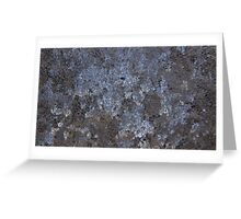 The Beauty in Frost. Greeting Card