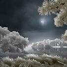 Ice Lands by Igor Zenin