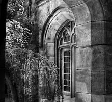 Through a Window by Mike  Savad