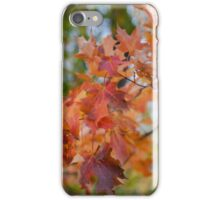 Milford Mine Park fall 2014 iPhone Case/Skin
