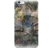 The Atlas Of Dreams - Color Plate 43 iPhone Case/Skin