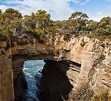 Tasman Arch and blowhole #2 by Roger Neal