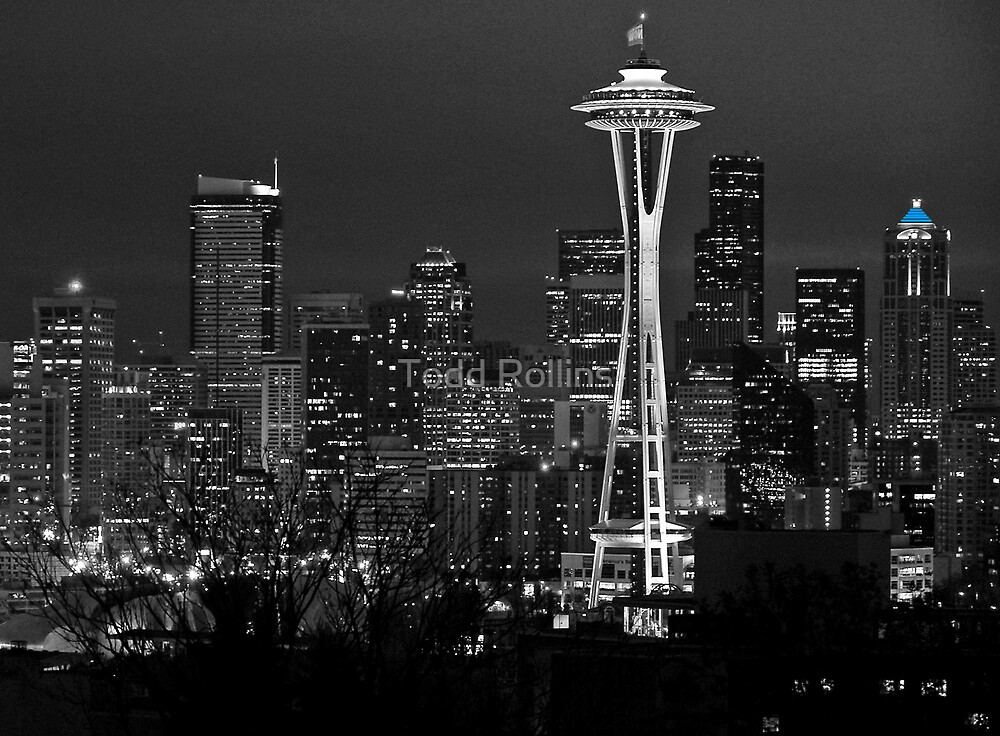 Black & Blue Seattle. by Todd Rollins
