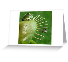 Good Things Come to those who Wait Greeting Card