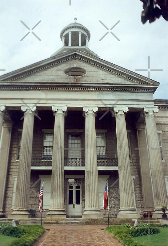 Vicksburg Courthouse by Sheila Simpson