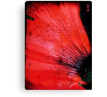 Book Flower Canvas Print