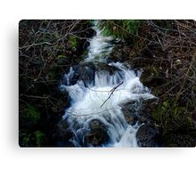 Cold Clear Water Canvas Print