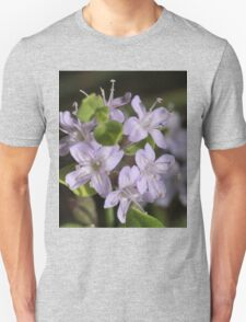 Slender Mint (Mentha diemenica) T-Shirt