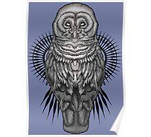 Geo Owl Poster
