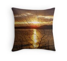 sunset through the undergrowth........ Throw Pillow