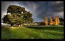 Stormy Arthur Glow by Robert Mullner