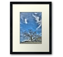 oak tree, landscape photography Framed Print