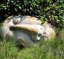 Stone Faced by Deborah Crew-Johnson