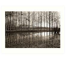 Marne Canal Art Print