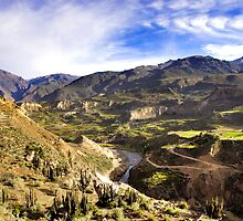 Colca Canyon by Krys Bailey