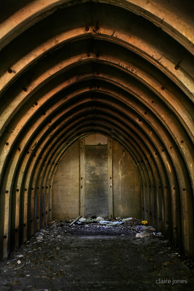 abandoned shelter by claire jones