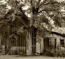 Old Barns Series #4 by Gaby Swanson  Photography
