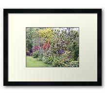 Herbaceous Border Framed Print