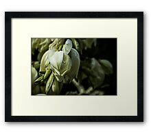 Winery Flowers Framed Print