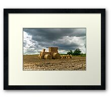 Eco farming Framed Print