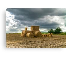 Eco farming Canvas Print