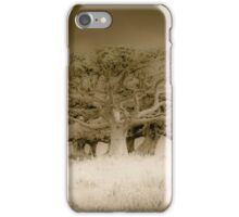 The old lonely trees iPhone Case/Skin
