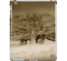 The old lonely trees iPad Case/Skin