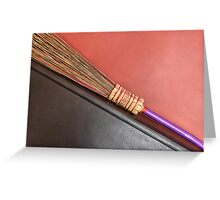 Quidditch auditions Greeting Card