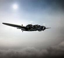 The Blenheim by J Biggadike