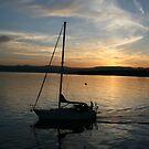 Sailing by Sunset by Rhonda  Thomassen