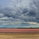 pink lake by Andrew Cowell