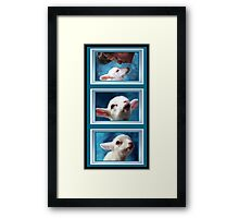 Prelude to a kiss. Framed Print