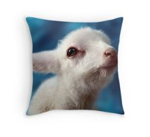 Steward 3 Throw Pillow