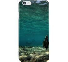 looking for the diver iPhone Case/Skin