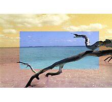 Isola Photographic Print